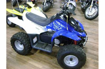 2005 Dinli Dl601 50db For Sale Used Atv Classifieds