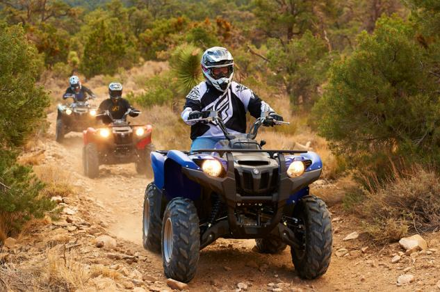 2014 Yamaha Grizzly 700 EPS Action Group