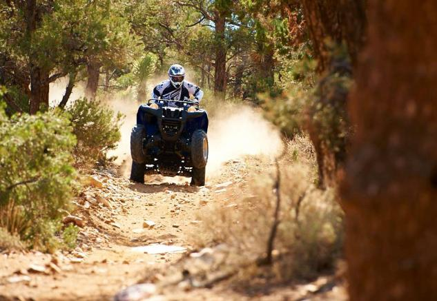 2014 Yamaha Grizzly 700 EPS Action
