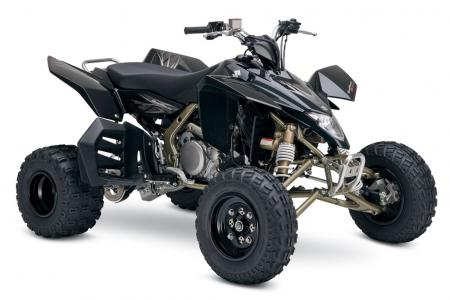 You�ve got to love the look of the gold frame on this special edition QuadRacer R450.