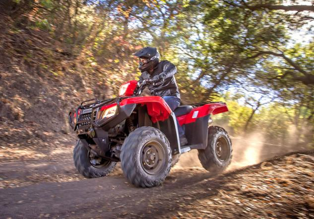 2015 Honda Foreman Rubicon Action High Speed