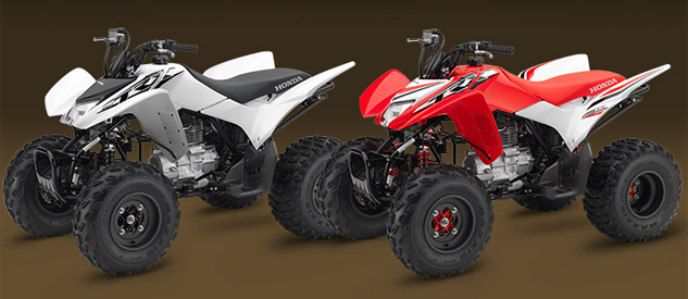 2016 Honda TRX250X Group