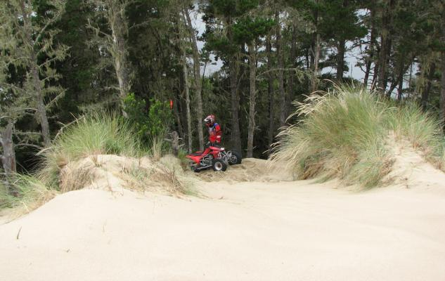 Oregon Dunes Coos Bay Shoots 2