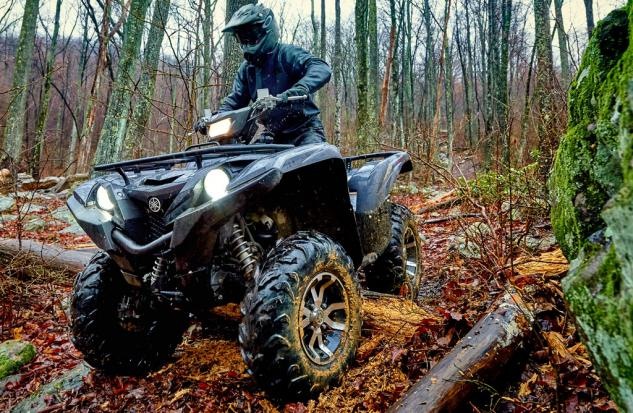 2016 Yamaha Grizzly SE Action