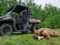 2017-Can-Am-Defender-Mossy-Oak-Hunting-Edition-Bear