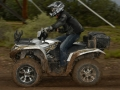 Yamaha-Grizzly-Action