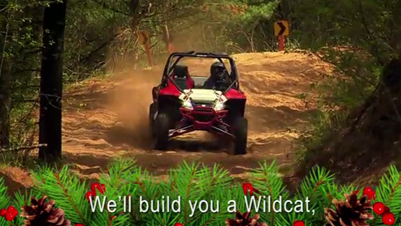 Arctic Cat Christmas