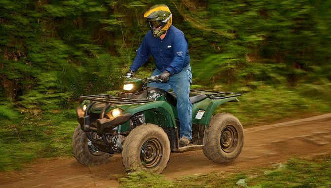 2018 Yamaha Kodiak 450 Action Speed