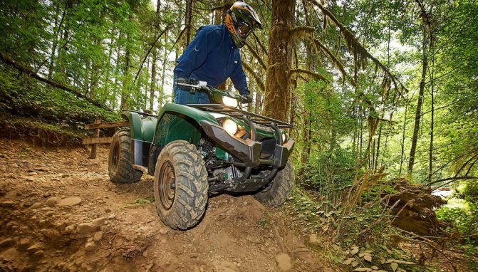 2018 Yamaha Kodiak 450 Woods