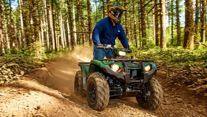 2018 Yamaha Kodiak 450 Action Front