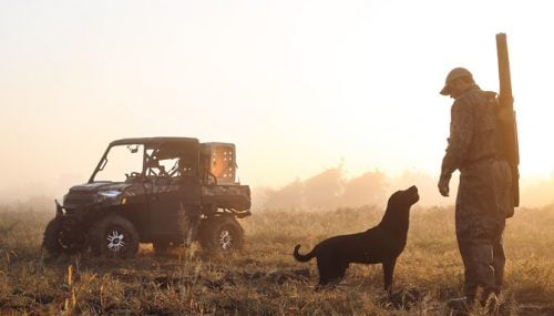 Five Tips for Taking the Dog in Your UTV