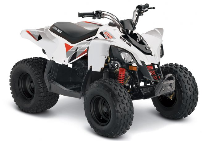2018 Can-Am DS 250 White