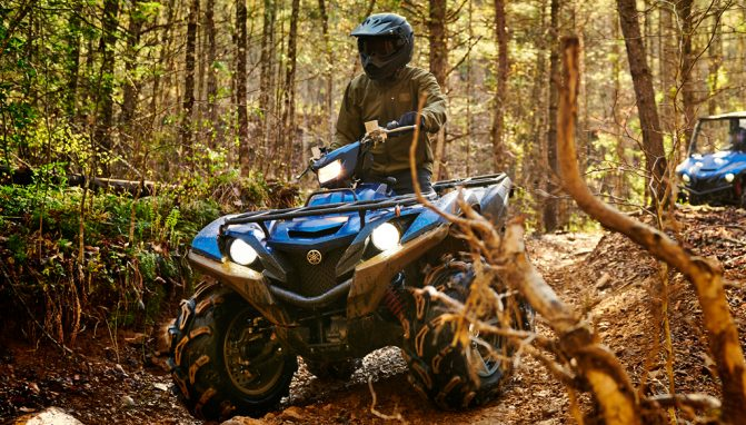 2019 Yamaha Grizzly EPS SE Action