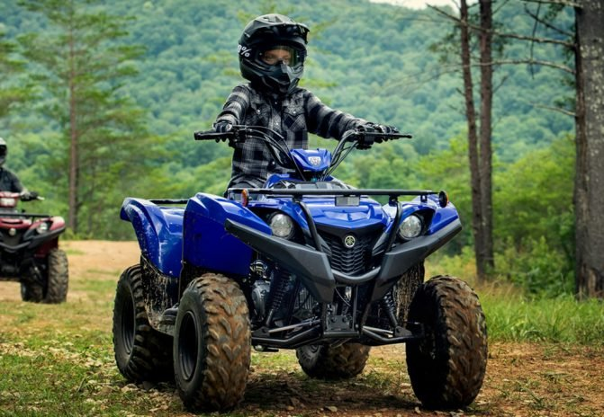 2019 Yamaha Grizzly 90 Action