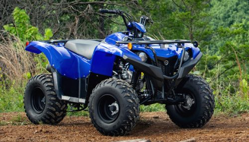 2019 Yamaha Grizzly 90 Unveiled
