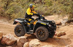 Stock suspension settings are fairly stiff, but the shocks can be tuned to suit your riding needs.