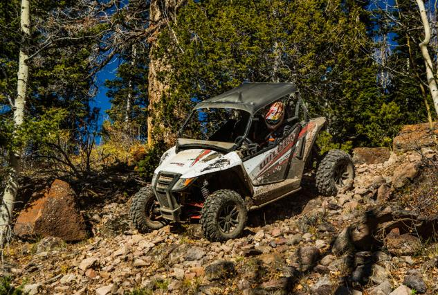 2015 Arctic Cat Wildcat Sport Action Rocks