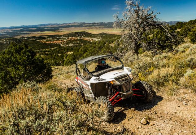 2015 Arctic Cat Wildcat Sport Action Elevation