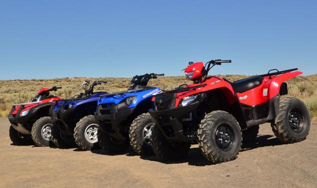 2014 Japanese Big Bore ATVs Group Left Side