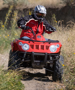 Though it won't win many drag races, the 366cc powerplant is great for light duty chores and having fun in the trails.