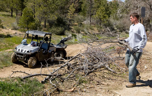 ATV Trails: Brush Clearing
