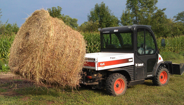 Bobcat UTV Holding Big Bale of Hay
