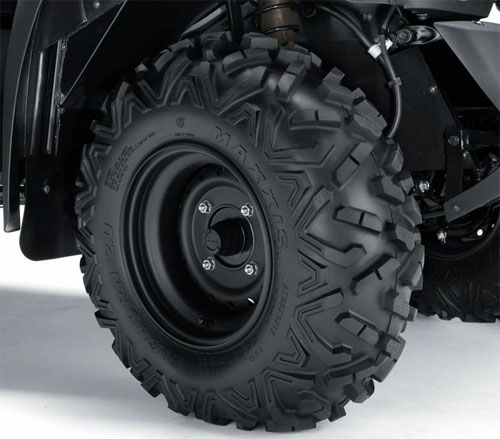 Maxxis BigHorn Tires