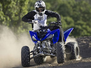 The Yamaha Raptor 250 has an MSRP of $3,999.