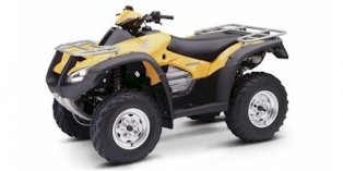 2004 Honda FourTrax Rincon™ Base