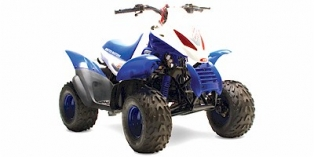 2007 United Motors Moontrax 50R
