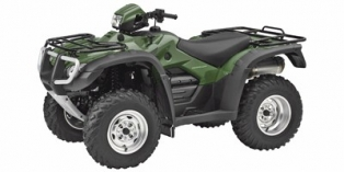 2008 Honda FourTrax Foreman® Rubicon