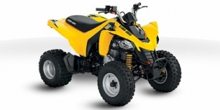 2010 Can-Am DS 250