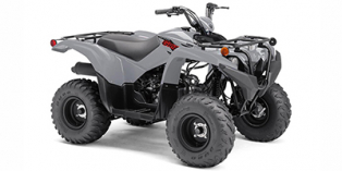 2021 Yamaha Grizzly 90