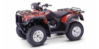 2004 Honda FourTrax Foreman® Rubicon