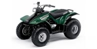 2004 Yamaha Breeze Automatic 2WD