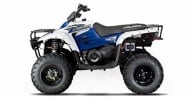 2006 Polaris Trail Boss® 330