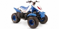 2006 United Motors Moontrax 90R