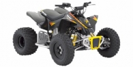 2009 Can-Am DS 90 X