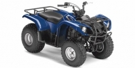 2008 Yamaha Grizzly 125 Automatic