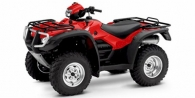 2009 Honda FourTrax Foreman® Rubicon