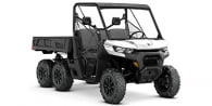 2020 Can-Am Defender 6X6 DPS HD10