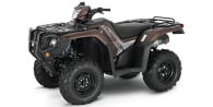 2020 Honda FourTrax Foreman® Rubicon 4x4 EPS