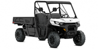 2021 Can-Am Defender PRO DPS HD10